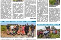 Article de Presse Vendanges 2019